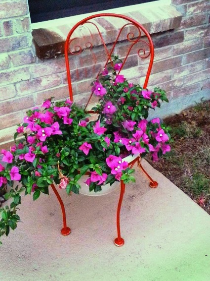 Jeanne Graham's pop of red accents the bougainvillea