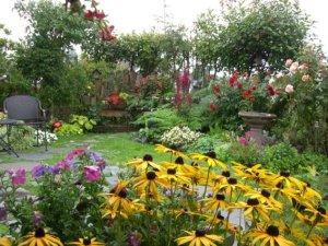 Kathy Juracek edges her lawn with a wide border