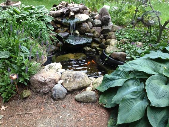 Myra Glandon tranquil pond