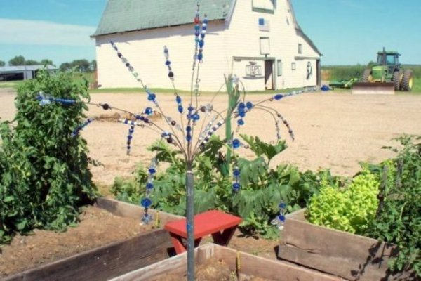 Sue Gerdes invented this Garden sparkler