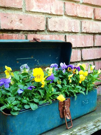 Jane Krauter's planter box, all planted