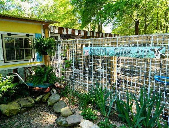 Dandi Gentry's chicken coop garden sign