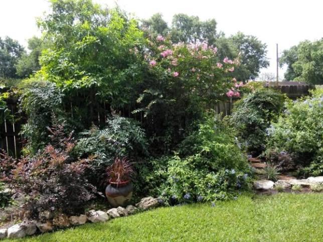 Kathy Marez I'm partial to lots of shrubs