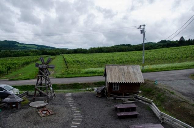 iwamizawa-9