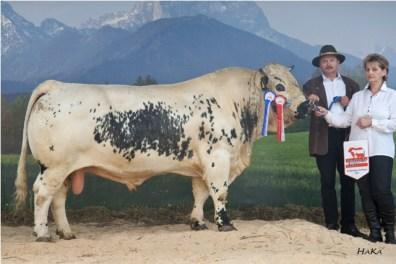 National Champion 2010