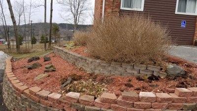 driveway-garden-before2