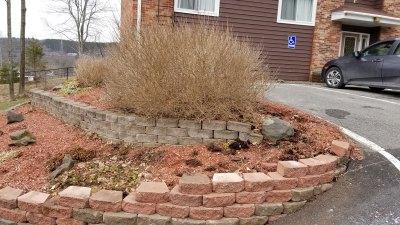 parking-lot-garden-before