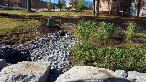 suny stormwater planning 3 - suny-stormwater-planning-3