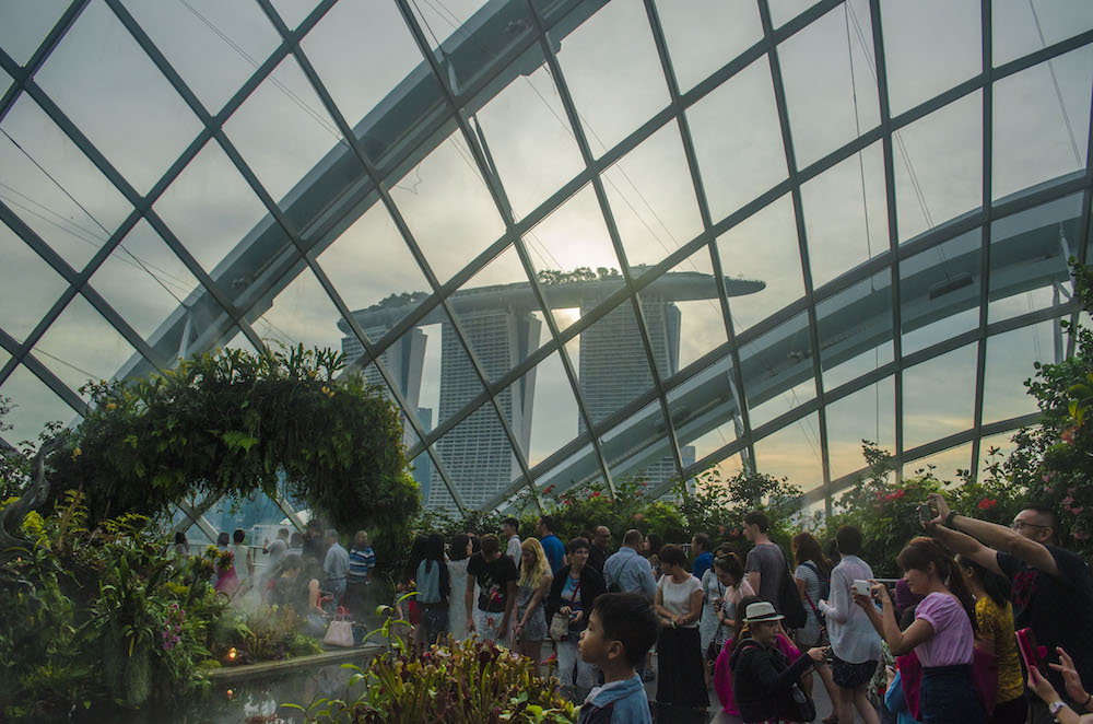 fleurdelilah 5 things to do in singapore gardens by the bay conservatory