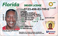 new driver license front