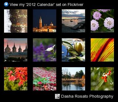 Dasha Rosato Photography - View my '2012 Calendar' set on Flickriver