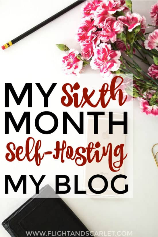 Interested in self-hosting your blog? This is a great overview of one blogger's sixth month blogging! Really cool to actually see what it's like!