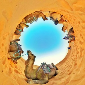 camel ride morocco desert
