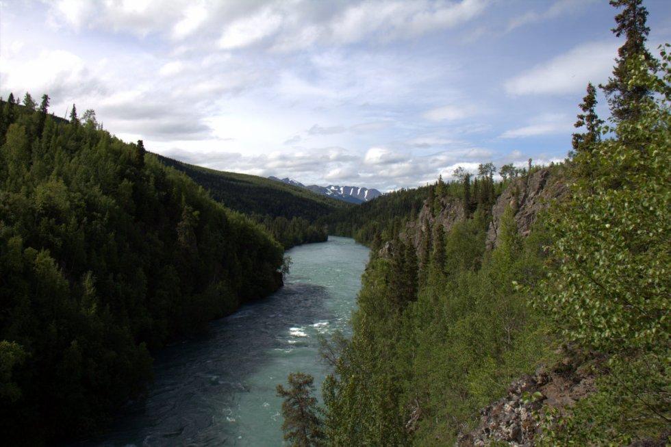 Kenai River Canyon