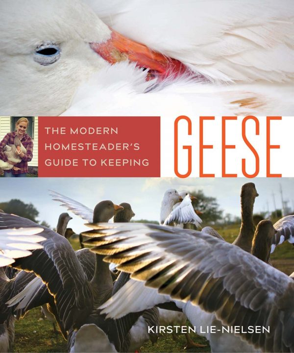 The modern homesteaders guide to keeping geese.