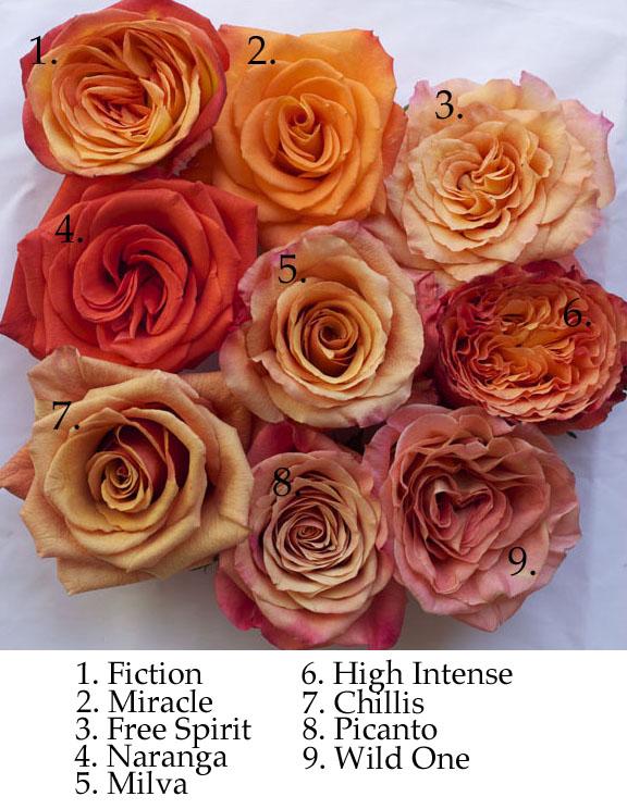 Hoboken wedding flowers