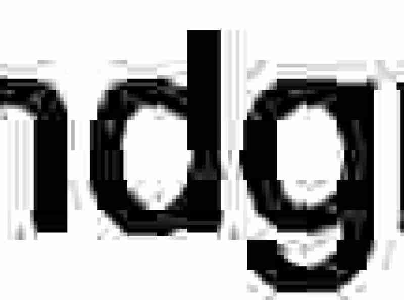Who doesn't love a good gluten free vegan apple crisp? This one has been jazzed up with a touch of molasses and holiday flavors.