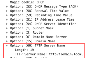 MSM TFTP Mode - Flomain Networking