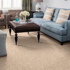 Lake Chandler Carpet