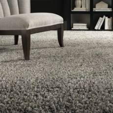 Shagariffic Carpet