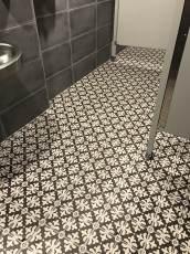Great Dane bathroom