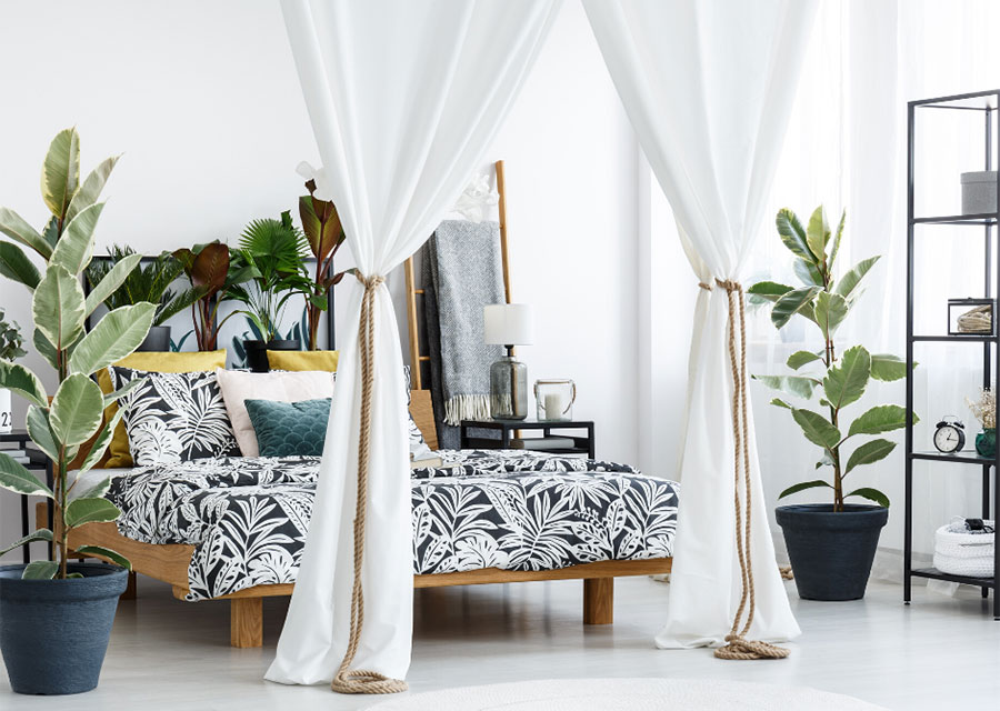 canopy bed design ideas for a bedroom
