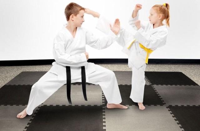 Temel Temizleme Yöntemleri: Judo Paspaslar