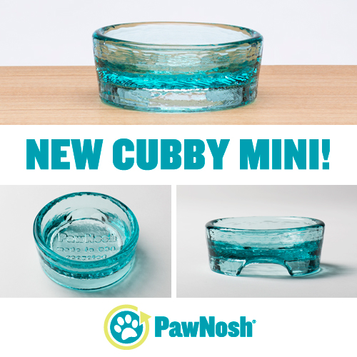 December 2015 Giveaway PawNosh Mini Cubby Bowls