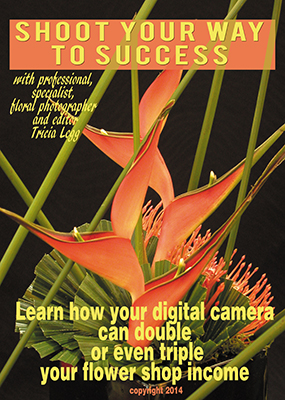 Learn how your digital camera can double or even triple your flower shop income