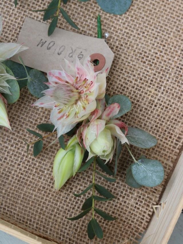 Blushing bride protea buttonhole