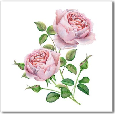 Printed Tiles - Pale Pink Roses Watercolour Image Ceramic Wall Tile