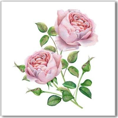 Printed Tiles - Pale Pink Roses Watercolour Image Ceramic Wall Tile