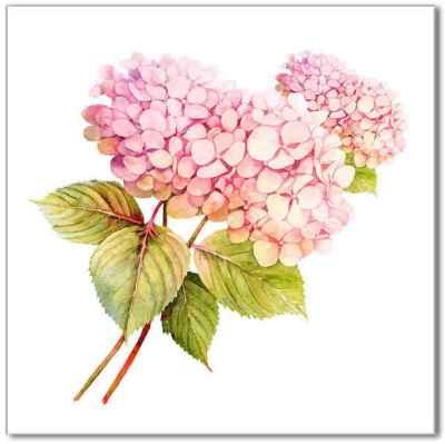 Shabby Chic Tiles - Pink Hydrangea Ceramic Wall Tile