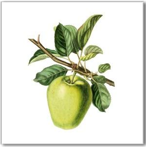 Green Tiles - Green Apple Ceramic Wall Tile