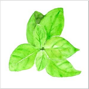 Green Tiles - Basil Herb Ceramic Wall Tile