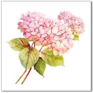 Flower Tiles - pink hydrangea ceramic wall tile