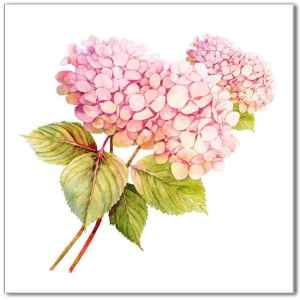 Flower Tiles - pink hydrangea ceramic wall tile