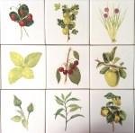 Kitchen Tiles Ideas - 21 Fruit, Berries, Herbs and Flower Tiles Ideas