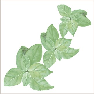 Basil Leaves Ceramic Wall Tile