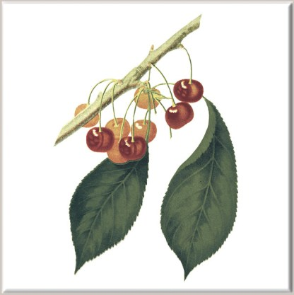 Small Red Cherries Ceramic Wall Tile