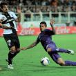 Fiorentina Soccer Team (Courtesy of Carlo Bressan photographer)