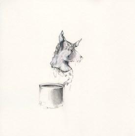 coyote écoutant du Mozart