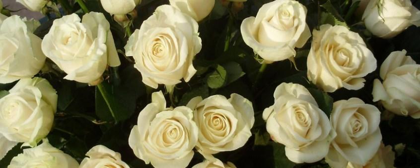 Flores Para Funerales Tipos Más Adecuados Florestore