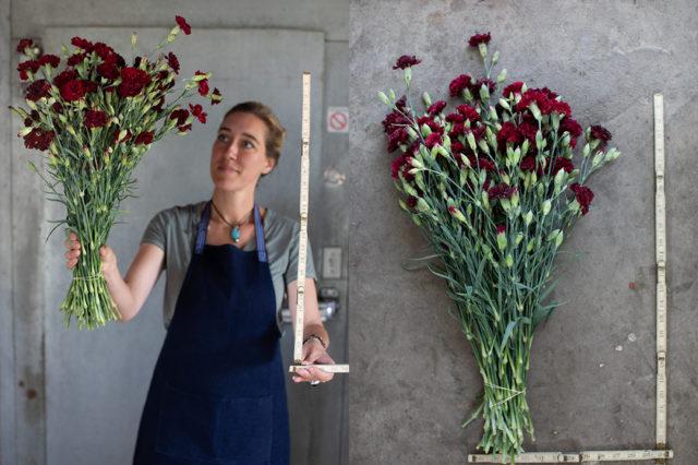long stemmed heirloom carnations