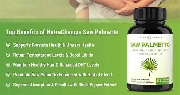 Medicine made from Saw Palmetto Palm Tree (Serenoa repens)