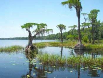 Photo: Florida Department of Environmental Protection