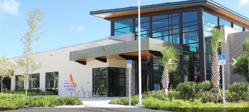 broward's new animal shelter with large, two-story glass reception area