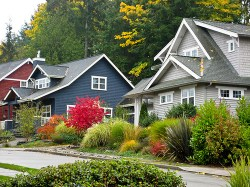 Thumbnail image for homes in a neighborhood.jpg