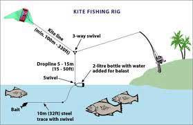 Fishing the Shore & Beach  Florida Go Fishing