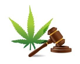 Florida physician self referral law